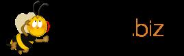 kasinon.biz logo